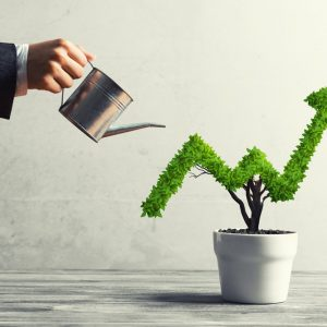 4 Trades in Cannabis Stocks That I'm Focusing On
